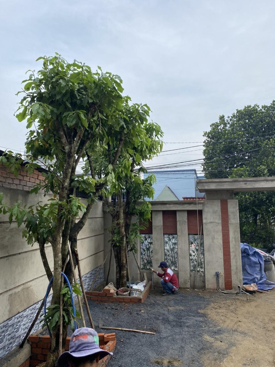 Hình ảnh thi công xây dựng công trình Biên Hòa Đồng Nai 25